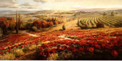 Red Poppy Panorama Art Print