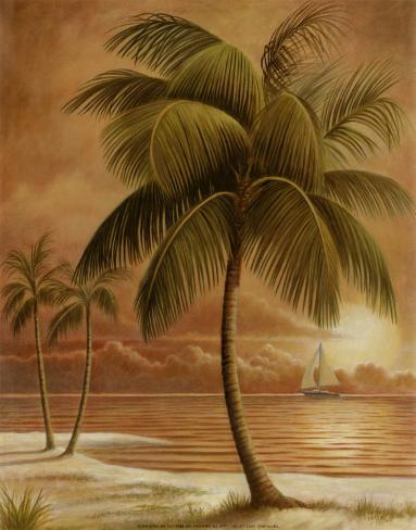 Island Palm I Art Print