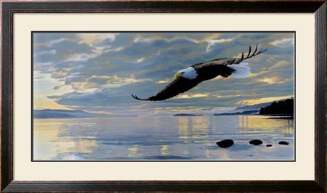 Dawn Flight Framed Art Print