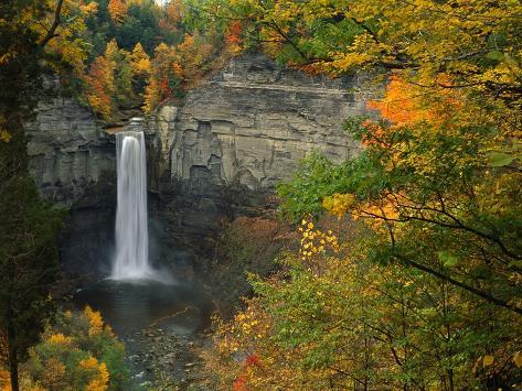 Waterfall Amongst Autumn Foliage Photographic Print
