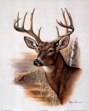 Deer Head Art Drawing