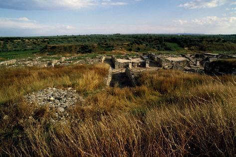 Ruins of Ancient City of Cannae, Battle of Cannae, Puglia, Italy Lámina giclée