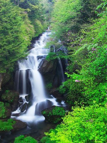 Ryuzu Water Falls Fotoprint