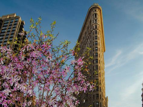 Flat Iron Building in the Spring, Manhattan, New York City Photographic Print