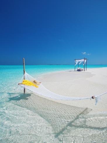 オールポスターズの サキス パパドプロス hammock on tropical beach