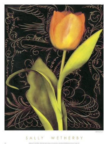 Tulip Manuscript II Art Print