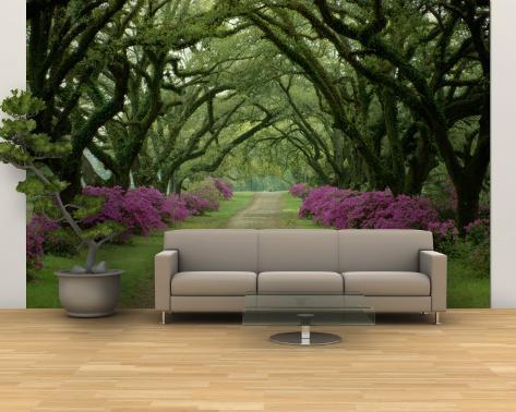 5e3658f32 Linda trilha com árvores e azaleias roxas Mural de parede – grande ...