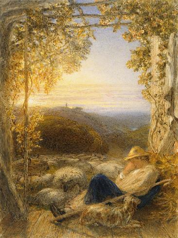 Sleeping Shepherd - Morning, C.1857 Lámina giclée