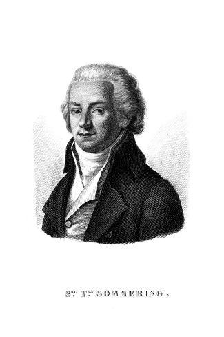Samuel Sommering Stampa giclée