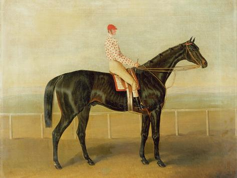 Voltigeur, with Job Marson Up Giclee Print