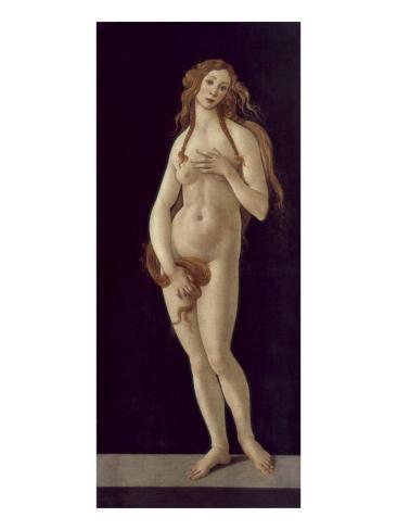 Venus Pudica Giclee Print