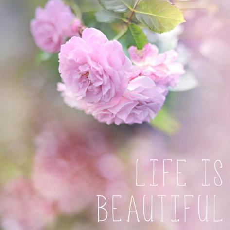 La vita è bella Stampa giclée premium