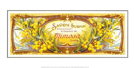 Savon Mimosas Art Print