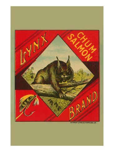 Lynx Brand Chum Salmon Stretched Canvas Print