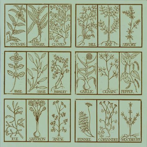 Edible herbs Giclée-vedos