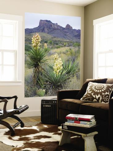 Spanish Dagger in Blossom Below Crown Mountain, Chihuahuan Desert, Big Bend National Park, Texas Wall Mural