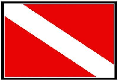 down flag bikini Diver