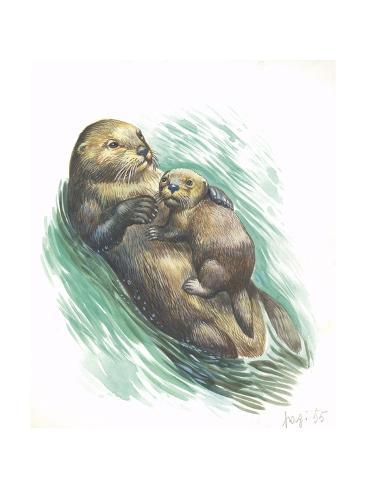 Sea Otter Enhydra Lutris Resting with Cub in Water, Illustration Stretched Canvas Print