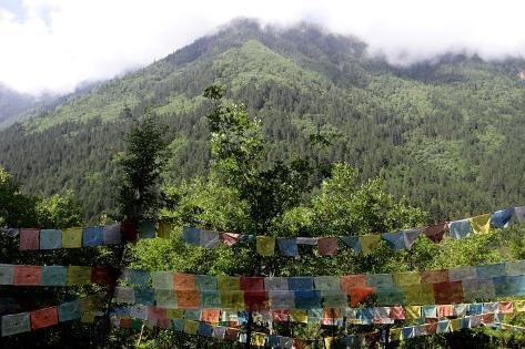 Tibetan Buddhist Prayer Flags Against a Forested Mountainside Photographic Print