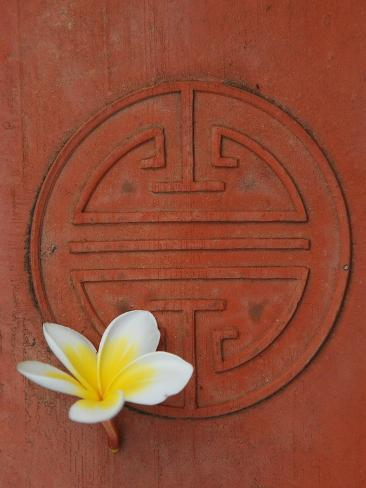 Long Life Symbol and Lotus Flower Photographic Print
