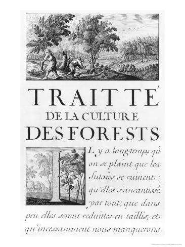 Traite de La Culture Des Forets Giclee Print