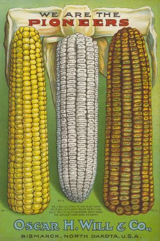 Seed Catalog Captions (2012): Oscar H. Will and Co, Bismarck, North Dakota, 1917 Taidevedos
