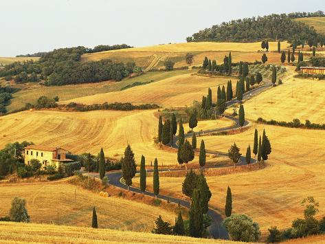 Italian Countryside of Val d'Orcia Photographic Print
