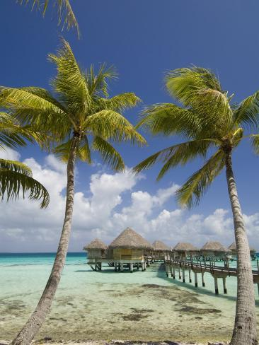 Pearl Beach Resort, Tikehau, Tuamotu Archipelago, French Polynesia Islands Photographic Print