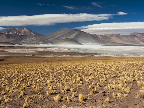 Salar De Talar, Atacama Desert, Chile, South America Photographic Print