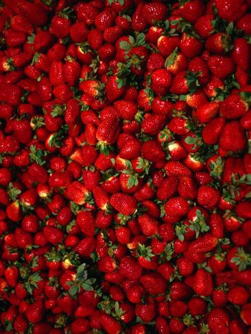Strawberries on Display, Paris, France Photographic Print