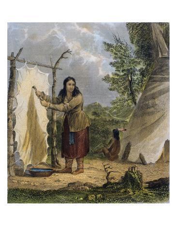Indian Woman Dressing a Buffalo Skin Giclee Print