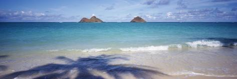 Shadow of a Tree on the Beach, Lanikai Beach, Oahu, Hawaii, USA Photographic Print