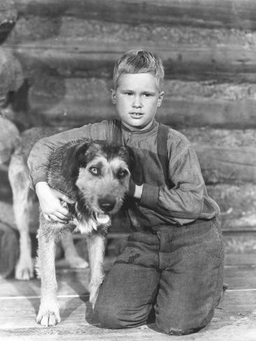 Shane, Brandon De Wilde, 1953 写真