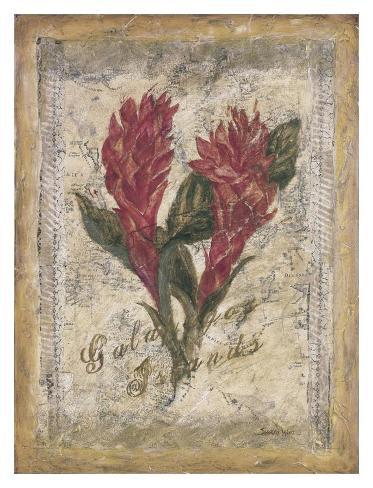 Red Ginger Art Print