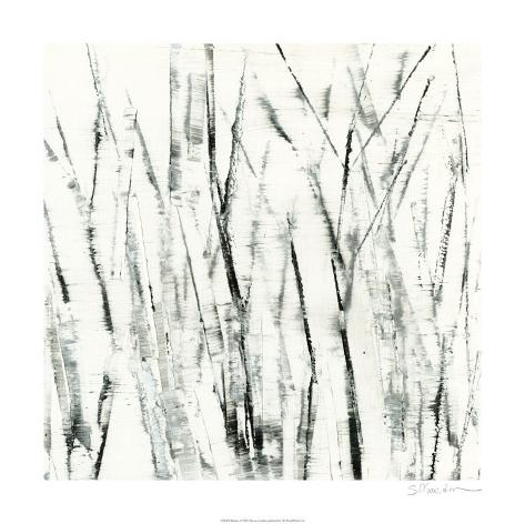 Birches I Limited Edition