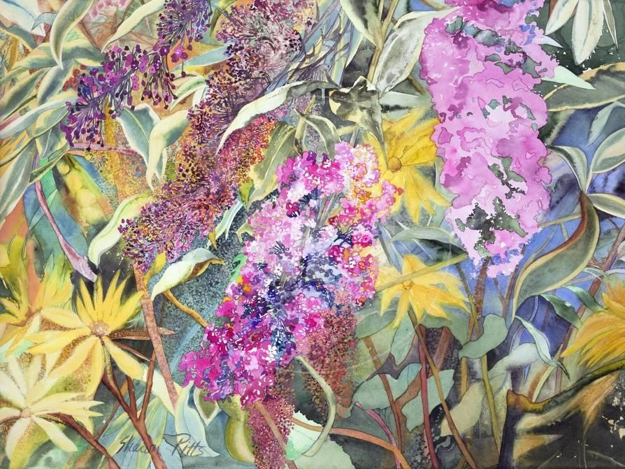 Allans Garden Giclee Print by Sharon Pitts - AllPosters.ca