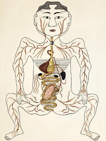 Pregnancy Anatomy, 15th Century Artwork Stampa fotografica