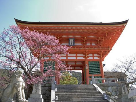 Soaring Gate of Temple, Kyoto, Japan Photographic Print