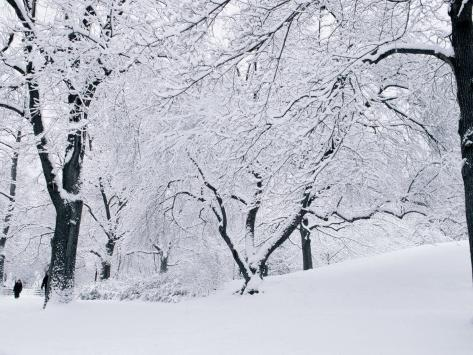 Central Park Covered in Snow, NYC Photographic Print