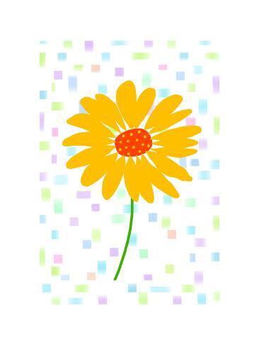 Single Yellow Flower With Orange Center On White Background Prints