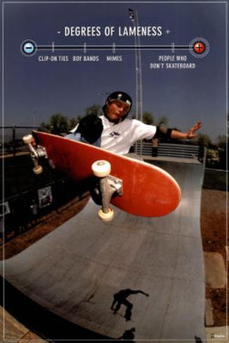 Skateboarding Degrees of Lameness Sports Poster Print Poster
