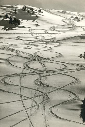 Ski Trails in Snow Art Print