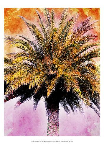 Hifi Palms IV Art Print