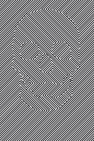 Skull - Illusion Poster