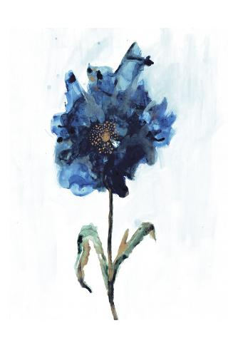 Modern Poppy 1 Art Print