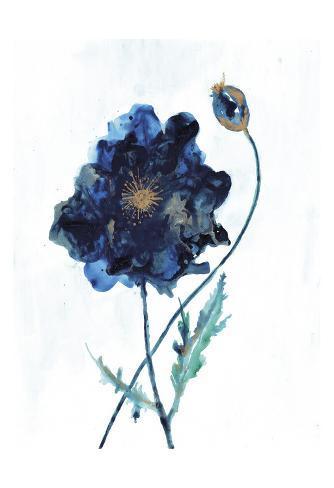 Modern Poppy 2 Art Print