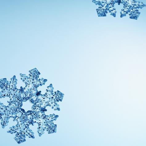 Snowflakes Photographic Print