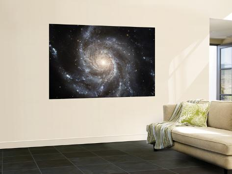 Spiral Galaxy Messier 101 (M101) Wall Mural