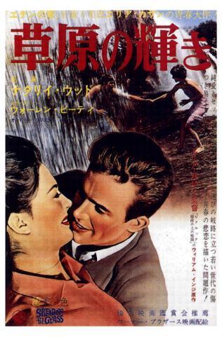 Splendor in the Grass, Japanese Movie Poster, 1961 Masterprint