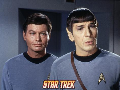 Star Trek: The Original Series, Spock and Dr. McCoy Stretched Canvas Print